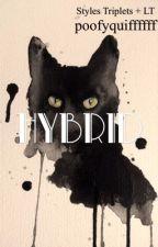 Hybrid (styles triplets+Louis) by poofyquiffffff
