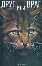 Коты Воители: Друг или враг by AlinaSharyp