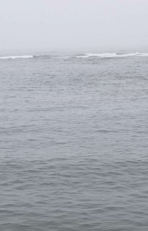 Tremors: High Tide by DameanMathews