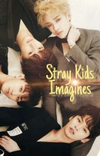 Stray Kids 🎀 Imagines  by baekXactly
