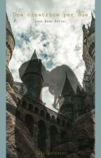 Una Cicatrice Per Due: Luna Potter by lily-potter03