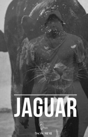 Jaguar by 5sos_mlml