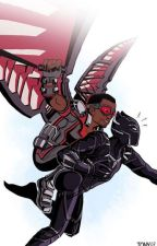 The Red Falcon and the Black Panther(A T'Cham/Black Falcon fanfic) by Irondragon4
