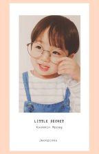 Little Secret - Kookmin [M-Preg] by jeonpinks