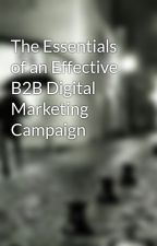 The Essentials of an Effective B2B Digital Marketing Campaign by ajtask