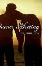 Chance Meeting  by eunanma