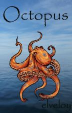 Octopus by elveloy