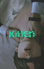 Kitten by beyondthescenesrule