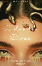 L'élue des dieux : ~En Pause ~(fanfiction de Percy Jackson) by The_Only-Mayo