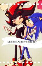Sonic x Shadow x Reader by caprisuns_o