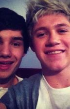 You're My Safe Place (A 1D, Niam, Highschool Story) by 1DEmeraldRose