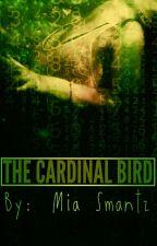 The Cardinal Bird by mia1200s