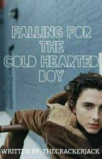 Falling for the Cold Hearted Boy (ON-HOLD) by thecrackerjack