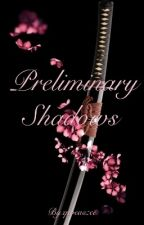 Preliminary Shadows (The Ravager #1) by qweaszee