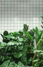 anpanman. [namjin.] by house-of-green