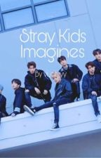 Stray Kids Imagines by vi_cityyy