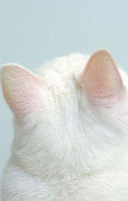 Đọc truyện NoRen | Nhà Jeno có một em mèo