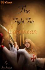 The Fight For Careinean by JonJodger