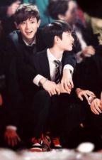 [Chuyển ver] [ ChanSoo] - Cậu đang thích tôi đấy by chansoo_love567