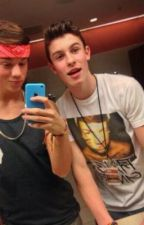 Story Of My Life (Taylor Caniff and Shawn Mendes Mpreg Fanfic) by Mpregbaby