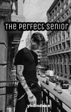 The Perfect Senior by yhdindaaa