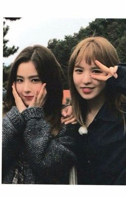 [WenRene] Series About These Guys🐹🐰