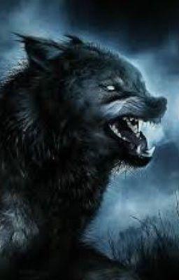 Đọc truyện u23 | ma sói
