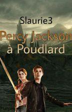 Percy Jackson a poudlard  [PAUSE] by Slaurie3