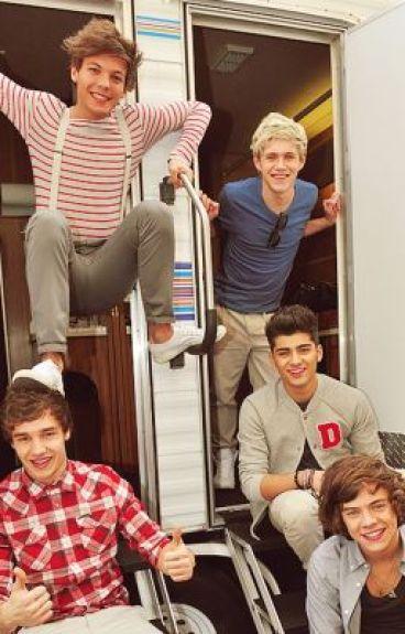 La mia vita con gli One Direction
