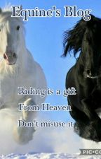 Equine's Blog by EquinePine