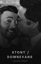 Stony / Downevans  by LoyolaStark