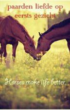 Paarden Liefde Op Eerste Gezicht by arrowhorses