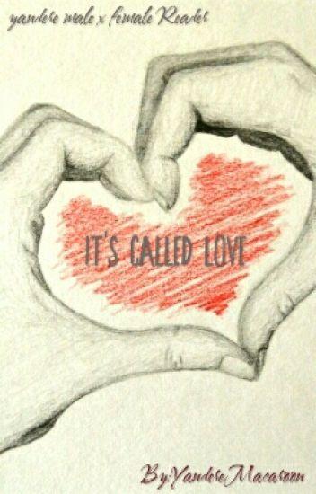It's Called Love (Yandere Insane Male x Female Reader) - me