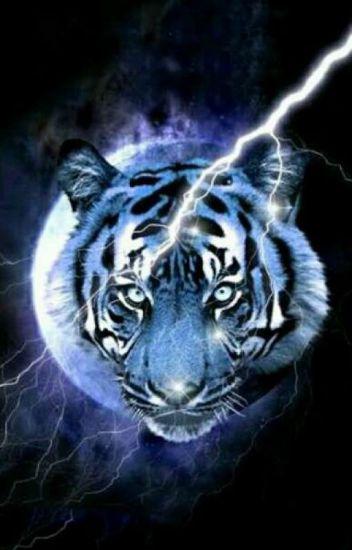 Frases Para Status Indiretas E Conselhos Tigresa Branca