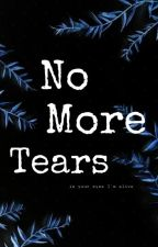 no more tears  by Brisa3113