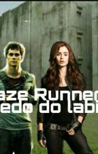 Maze Runner: O Segredo Do Labirinto. by luciwolf1234