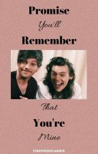 Promise You'll Remember That You're Mine by ishqlarry
