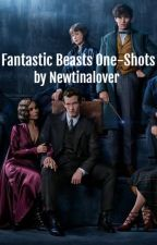 Fantastic Beasts One-Shots by Newtinalover