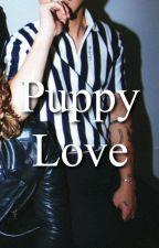 Puppy Love   Cashton [Slow Updates] by Mycute5sos