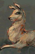 The Llama Book by aritaegrande
