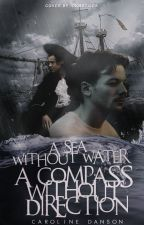 A sea without water, a compass without direction by SrtaDanson