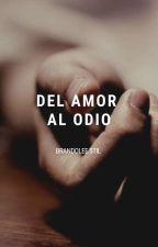 Del Amor Al Odio by StilSernaque