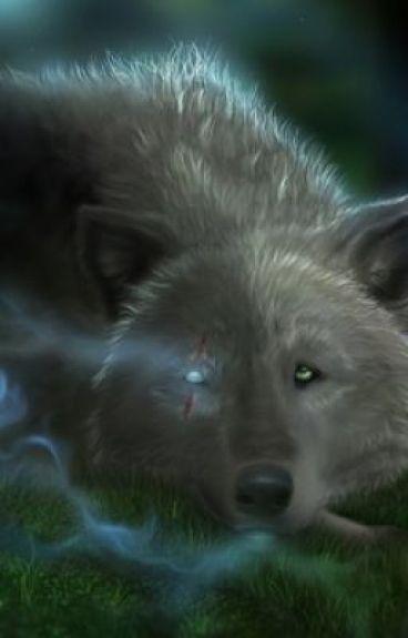 Wolf of Legends:Eyes of a freak by vampires98