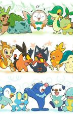 Pokémon Roleplay Book by DTW123348