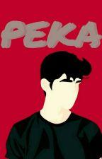 Peka [completed] by isnaaldila_