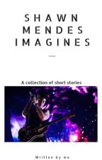 Shawn Mendes Fanfic🍁 by jo1ena