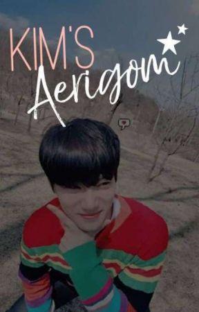 Kim's Aerigom || KJI by ChoMallow-