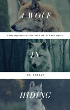 A wolf in hiding | Teen wolf/Twilight by Thechosenblackwolf
