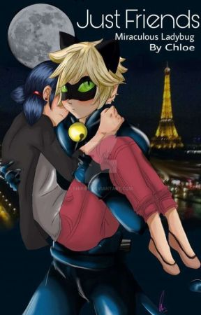 Just Friends-A Miraculous Ladybug Fanfiction - 14-Do You Really Know
