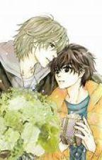 Super Lovers | Winter Romance | Fanfiction Ren x Haru by Kawaii_Authour_123